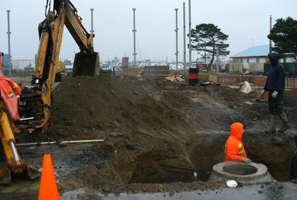 septic repairs company Olympia WA